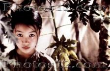 Scent of the Greenpapaya - 영화속 공간탐험