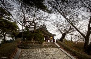 강릉 경포대 : 강원도 강릉시 저동 94