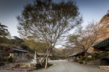 의성 고운사 : 경상북도 의성군 단촌면 구계리 116